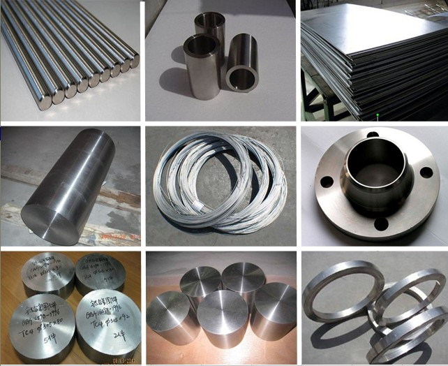 Titanium Products Disc Flange Forgings Ring